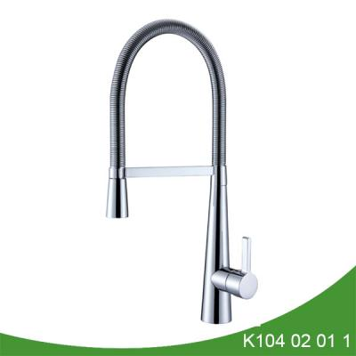 Coil spring kitchen faucet